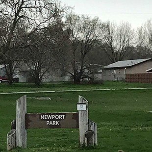 Newport Park Image
